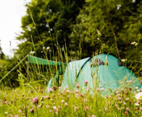 Ferienpark Thüringer Wald - Camping