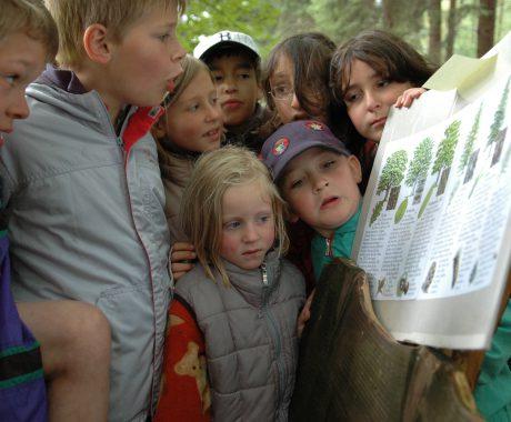 Ferienpark Thüringer Wald - Natur erleben
