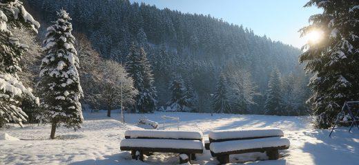 Ferienpark Thüringer Wald - Winter